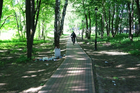 «Стихийная свалка» возле мусорного контейнера в городском парке недалеко от «Ивановских прудов».