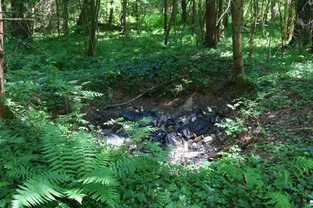 Свалка бытовых отходов в гуще леса в 300 метрах от болота на поле!