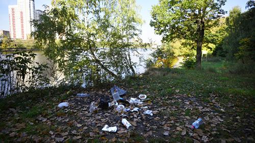 Куда жаловаться на незаконную свалку в Московской области?