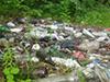 Стихийная свалка бытового мусора в Опалиховском лесопарке Красногорска.