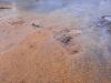 """Ярмарочную площадь у ДК """"Подмосковье"""" превратили в песчаный карьер, мусорный полигон и общественный туалет – три в одном!"""